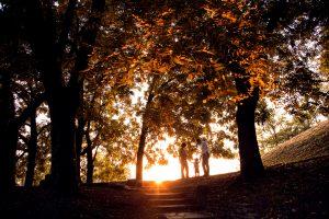 ritratto fotografo di famiglia al parco