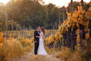 sposi nella vigna italia